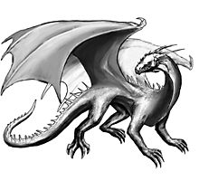 Black and White Dragon Photographic Print