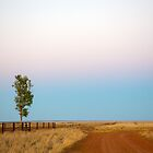 Wide Open Plain by David Haworth