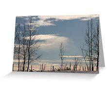 Ragged Fence Greeting Card