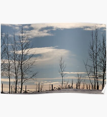 Ragged Fence Poster
