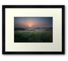 Calm sunrise over swamp Framed Print