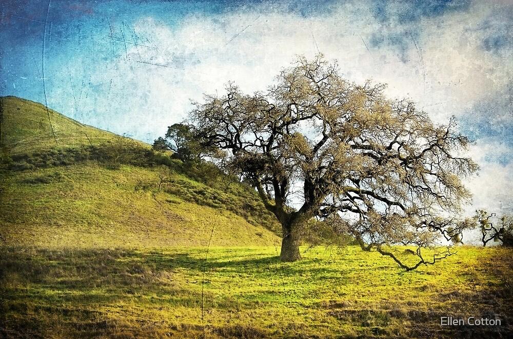 Kiss the Earth by Ellen Cotton