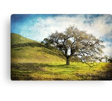 Kiss the Earth Canvas Print