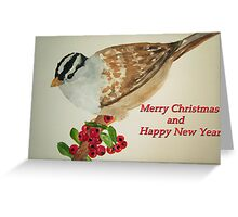 Bird on Holly Berries Greeting Card