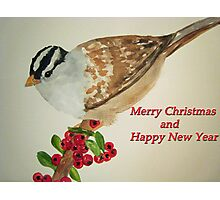 Bird on Holly Berries Photographic Print