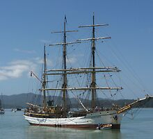The Picton Castle at Opua, Bay of Islands,  New Zealand......! by Roy  Massicks