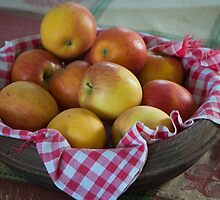 Roberta's Apples by Yvonne Roberts