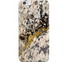 Granite and Lichen iPhone Case/Skin