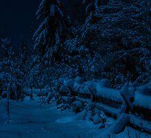 It always glitters at midnight on Christmas Eve by Chris Kiez