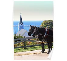Horse Carriage With a View Poster