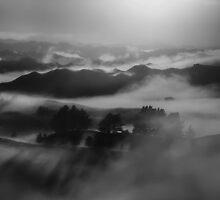Beginnings Make Me Tremble by Peter Kurdulija