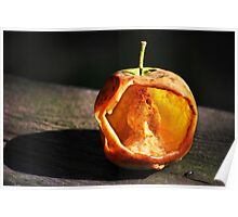 Apple hollowed out by insects... Poster
