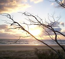 Sunrise Fraser Island by FangFeatures