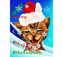 Christmas Ginger Kitty Photographic Print