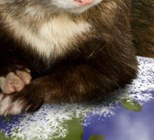 Celebrate Earth Day Ferret Sticker