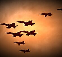 Fly Past by diggle