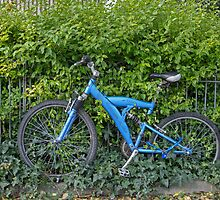 Bicycle With Ivy by Sue Robinson