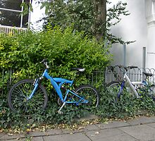 Bicycles and Ivy by Sue Robinson