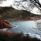 Sleepy Bay, Tasmania - Australia by Nicola Barnard