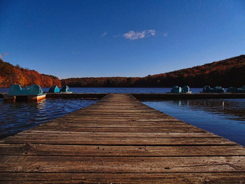 Silence at the Lake by PineSinger