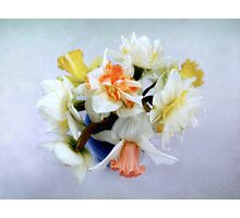 Spring Daffodil Bouquet Photographic Print