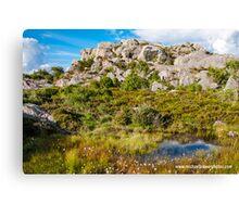 Pond among Glacial Moraines Canvas Print