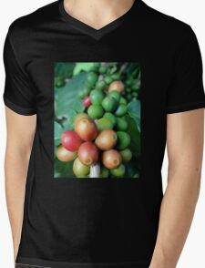 Coffee fruits 1 Mens V-Neck T-Shirt