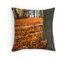 Walking to the Light... Throw Pillow