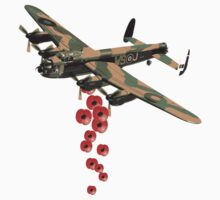 Lancaster Poppy Drop by J Biggadike