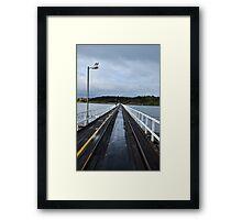 Penguin Island Framed Print