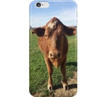 little brown cow iPhone Case/Skin