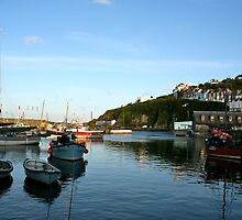 Mevagissey, Cornwall - UK by Nicola Barnard