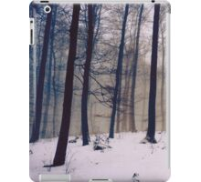 Whispers of the Forest - Forest Trees with Snow iPad Case/Skin