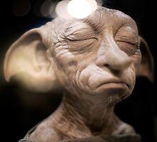 Harry Potter: Dobby by Tiia Öhman