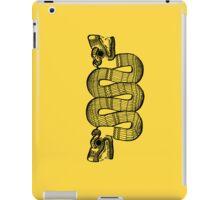 Aztec Rain iPad Case/Skin
