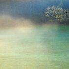 A Foggy Day by Imi Koetz