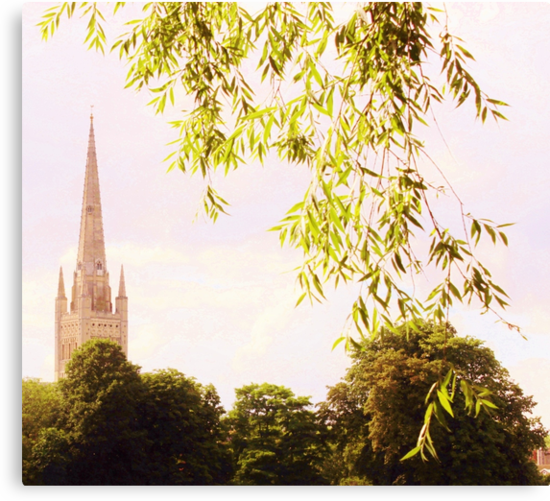 Norwich Cathedral  by Vincent J. Newman