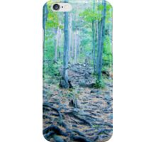 Rocky Forest Adventure iPhone Case/Skin