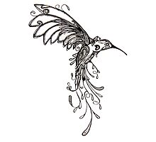 Humming Bird Photographic Print