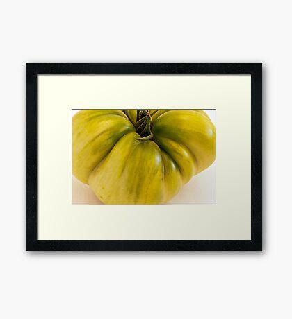 Green Tomato Macro  Framed Print
