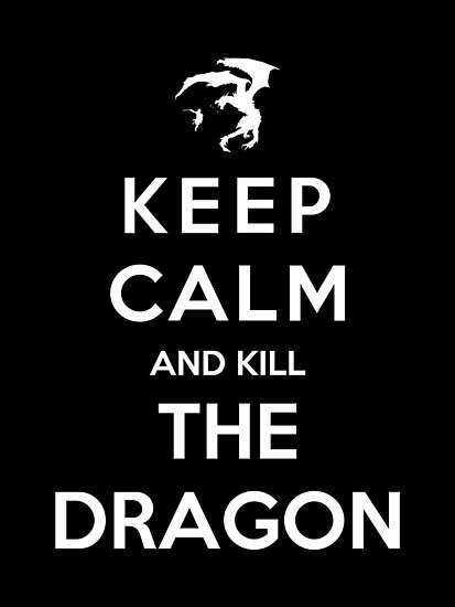 Keep Calm And Kill The Dragon by Royal Bros Art