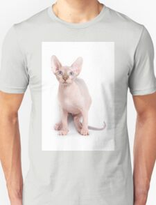 Sphinx kitten with blue eyes Unisex T-Shirt