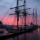 Tall Ships, Hobart, Tasmania, Lady Franklin & Tecla behind by Odille Esmonde-Morgan