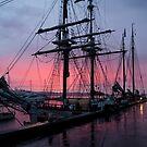 Tall Ships, Hobart, Tasmania, Lady Franklin & Tecla behind by Odille Esmonde-Morgan