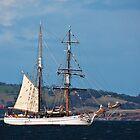 Tall Ships, Hobart, Tasmania - Soren Larsen by Odille Esmonde-Morgan