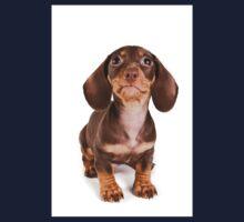 Brown dachshund puppy Kids Tee