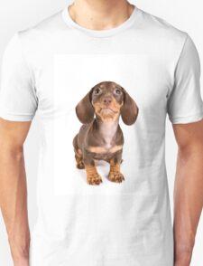 Brown dachshund puppy Unisex T-Shirt
