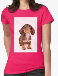 Brown dachshund puppy Womens Fitted T-Shirt
