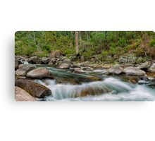 Rocks & Rapids Canvas Print