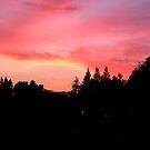 Sherbet Sunset by kangarookid